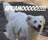 RIAPERTURAAA!!!